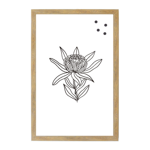 Protea Botanical Line Drawing
