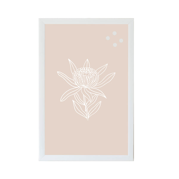 Protea Flower Botanical Line Drawing
