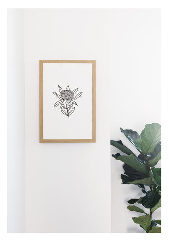 Petal Lane Home Neutral Botanical Line Drawn Protea Flower on Magnetic Board