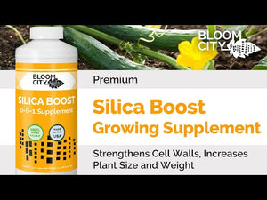 Premium Silica Boost Growing Supplement