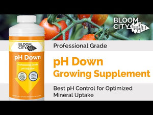 Professional Grade pH Down Growing Supplement