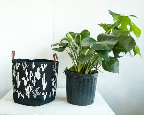 XL Heavy Canvas Fabric Bucket in White cactus  Print on black Background