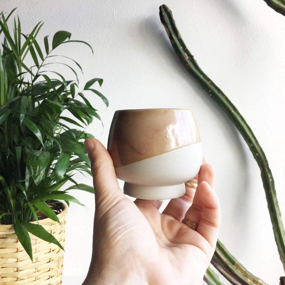 "2.5"" Pot/Planter-Beige dipped Glaze"
