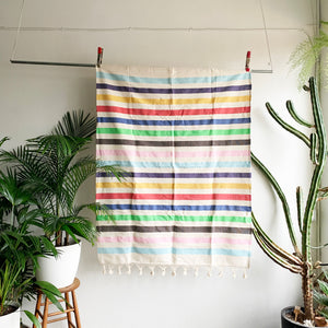 Striped Woven Multi Color Throw