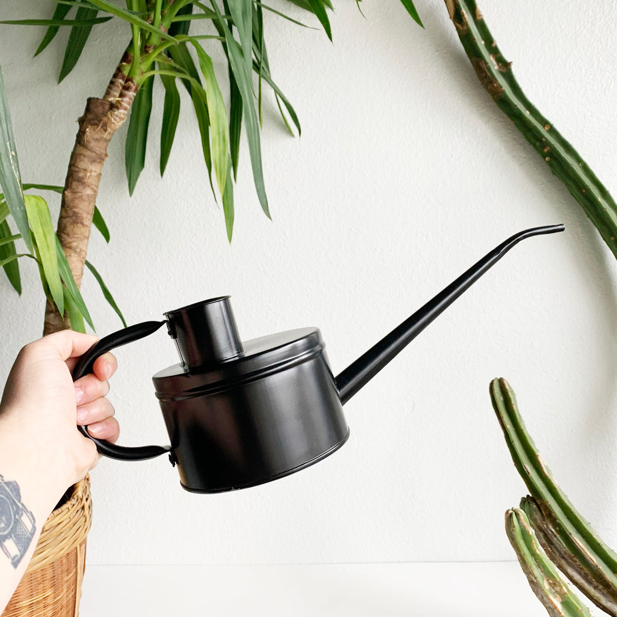 Aluminum Flat Black Watering Can