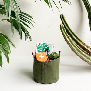 Plant Lovers Gift Bucket- Local Pick-up or Delivery only on This one!