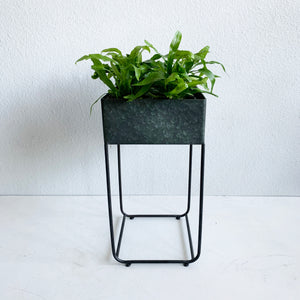 Galvanized Plant Stand **Local Pick-up or Delivery Only**