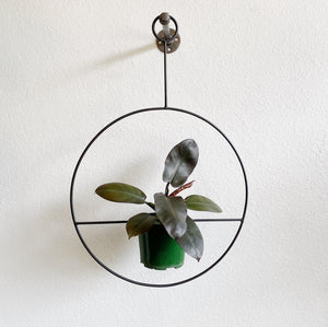 Black Metal Plant Hoop- LOCAL pick- up or Delivery