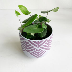 "Purple Chevron Pot 5"" - Local Pick-Up or Delivery Only"