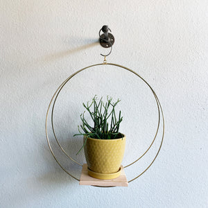 Large Brass Plant Hoop with Wood Platform