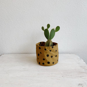 Medium Canvas Bucket- Polka Dots