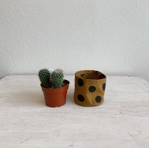Small Canvas Bucket—Polka Dot