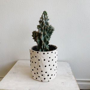 XL Canvas Bucket—Polka Dot