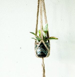 Small Cord Jute Plant Hanger with square Knots