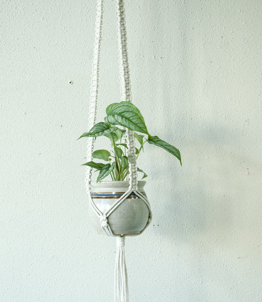Small Cord White Plant Hanger with Square Knots