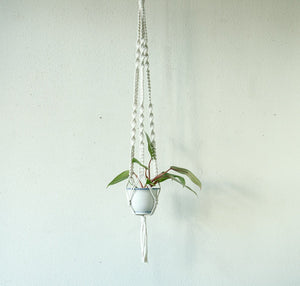 Small Cord White Plant Hanger with Mixed Knots