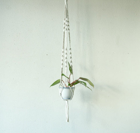 Small Cord White Plant Hanger-Mixed Knots