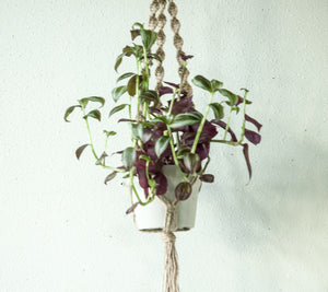 Small Cord Jute Plant Hanger with Twist Knots