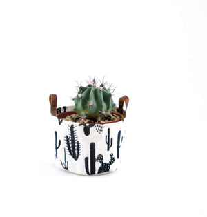 Small Fabric Bucket-Cactus Print Natural