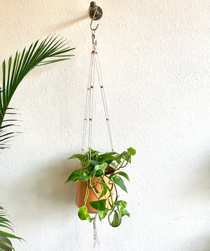 Simple Copper and Cord Plant Hanger