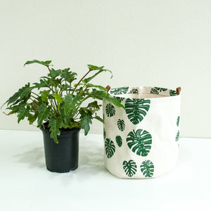 XL Fabric Bucket—Monstera Leaf