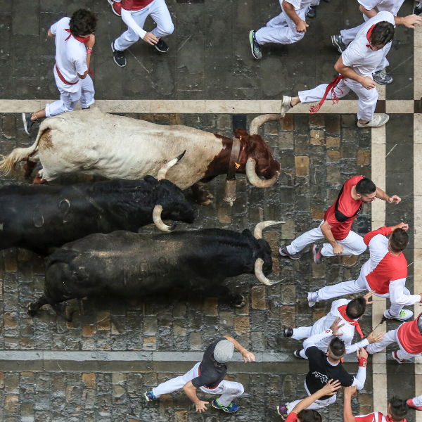 How to Escape From a Charging Bull