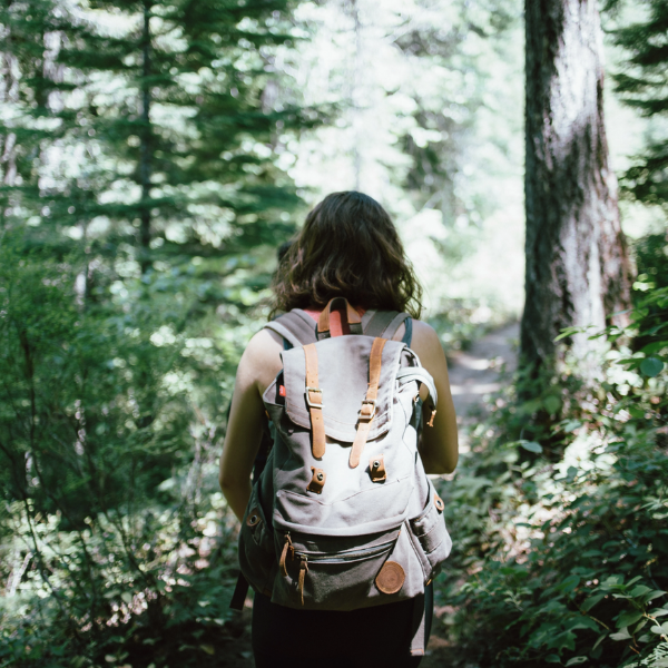 Why Hiking is the Perfect Form of Exercise