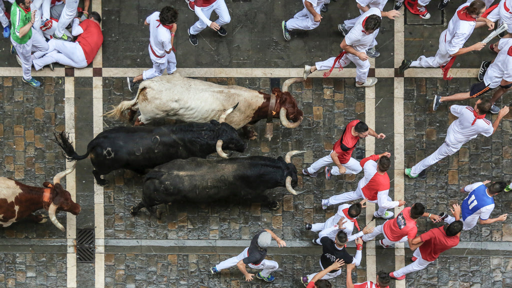 What should you do if a bull charges at you?