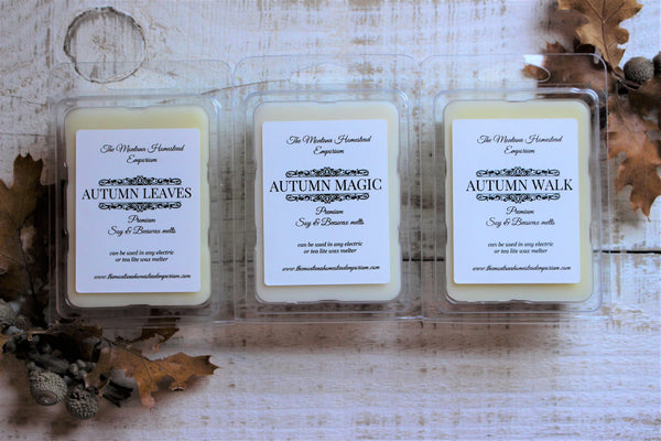 3 premium wax melts in Autumn fragrances - gift set