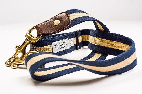 Navy and Gold Stripe - Italian Leather Belt - Bryland