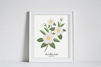 Georgia Cherokee Rose - State Flower Art Print