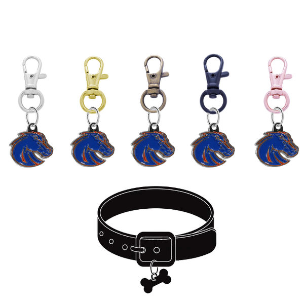 Boise State Broncos 2 NCAA Pet Tag Dog Cat Collar Charm