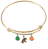 Florida A&M Rattlers GOLD Expandable Wire Bangle Charm Bracelet