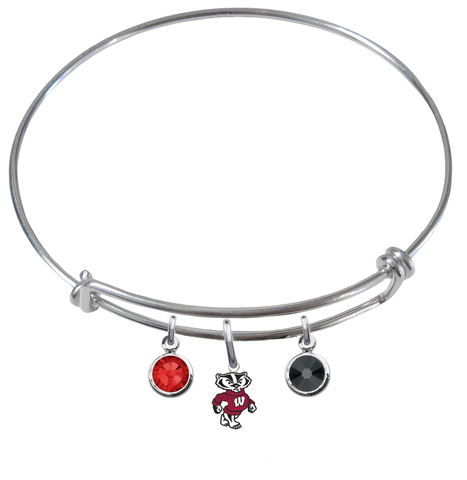 Wisconsin Badgers Mascot Logo NCAA Expandable Wire Bangle Charm Bracelet