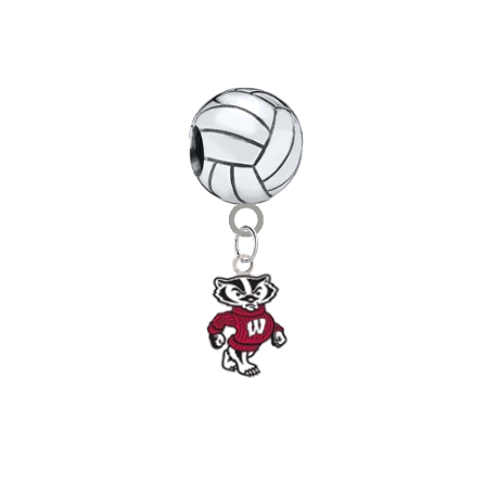 Wisconsin Badgers Mascot Volleyball Universal European Bracelet Charm