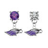 Wisconsin Whitewater Warhawks PURPLE & CLEAR Swarovski Crystal Stud Rhinestone Earrings