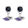 Wisconsin Whitewater Warhawks BLACK Swarovski Crystal Stud Rhinestone Earrings