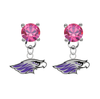Wisconsin Whitewater Warhawks PINK Swarovski Crystal Stud Rhinestone Earrings