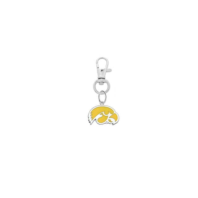Iowa Hawkeyes 2 Silver Pet Tag Dog Cat Collar Charm