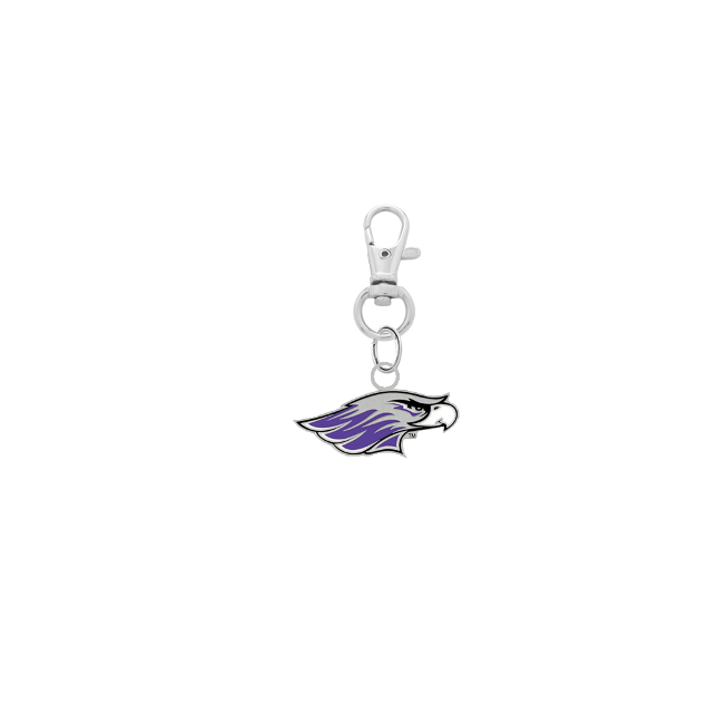 Wisconsin Whitewater Warhawks Silver Pet Tag Dog Cat Collar Charm