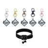 Tampa Bay Rays MLB Pet Tag Dog Cat Collar Charm