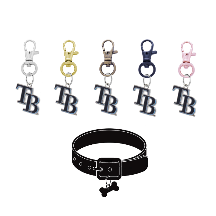 Tampa Bay Rays Style 2 MLB Pet Tag Dog Cat Collar Charm