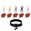 Wisconsin Badgers NCAA Pet Tag Dog Cat Collar Charm