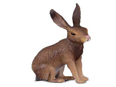 Bonnie the Brown Hare
