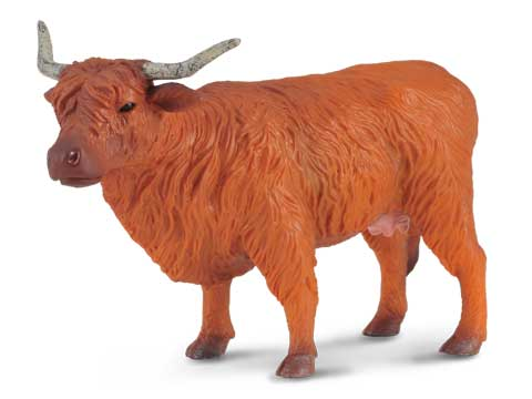 Hanna the Highland Cow