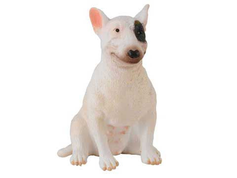 Bessie the Bull Terrier