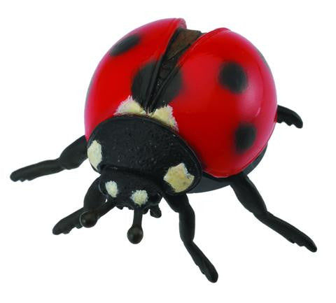 Lily the Ladybird