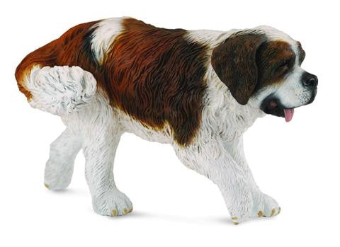 Basil the St Bernard