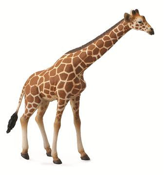 Genevieve the Giraffe