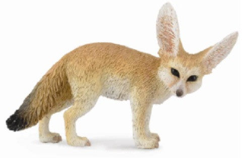 Fifi the Fennec Fox